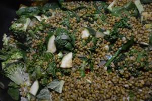 mung beans 3